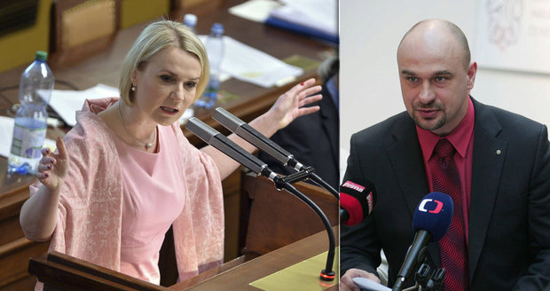 """""""Vymyté mozky. Čuňata!"""" Černochová z ODS šila ve Sněmovně do ANO"""