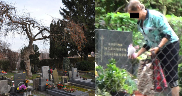 Zlodějka na hřbitově v Chrudimi: Kradla i hračky z hrobu holčičky!