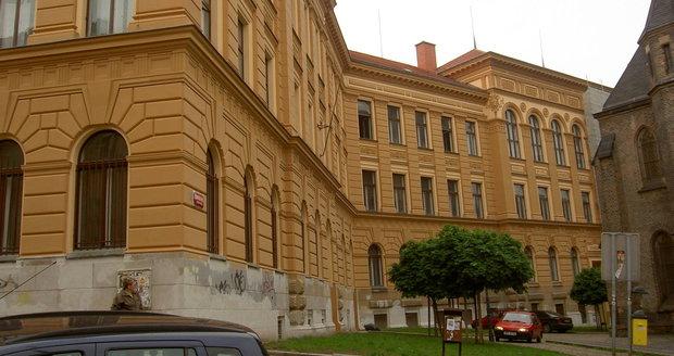 Do Gymnázia Karla Sladkovského v Praze 3 také naběhnou v létě dělníci.