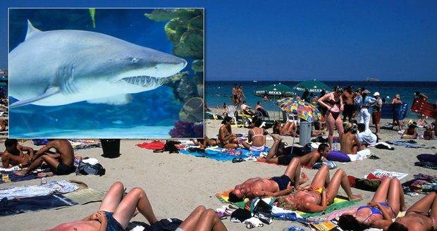 V dovolenkovém ráji Čechů útočil žralok: Muži prokousl ruku a zmizel