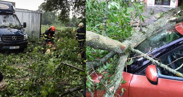 Spadlé stromy, výpadek elektřiny, stojící vlaky: Českem se přehnala bouře.