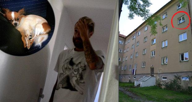 Vyhodil čivavu (†6) z okna: Známý fotbalista Skoupý dostal za svou zuřivost rok vězení s podmínkou
