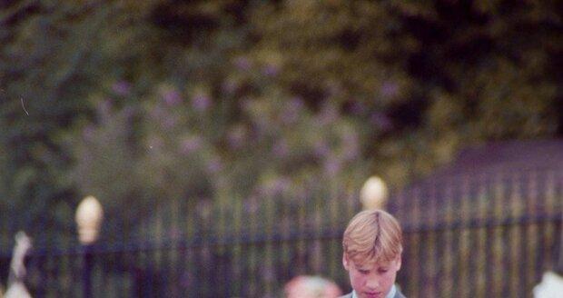 Princové William a Harry na pohřbu maminky Diany