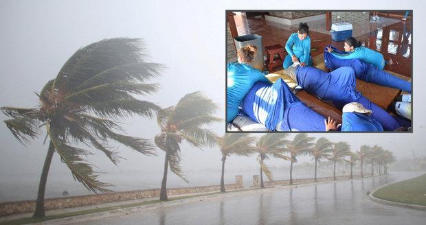 Kvůli hurikánu evakuovali i delfíny. Irma slábne, stále je ale extrémně nebezpečná