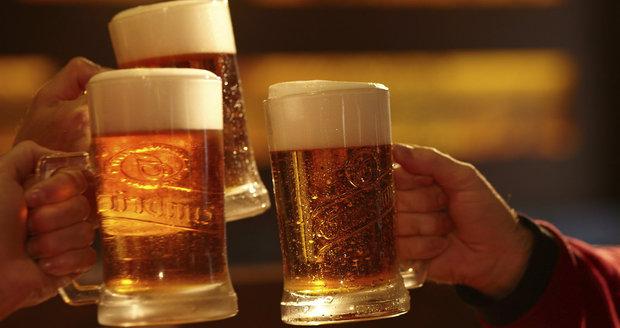 Oslavte chmelobraní. Piva Gambrinus budou v říjnu v hospodách nachmelená čerstvým chmelem.