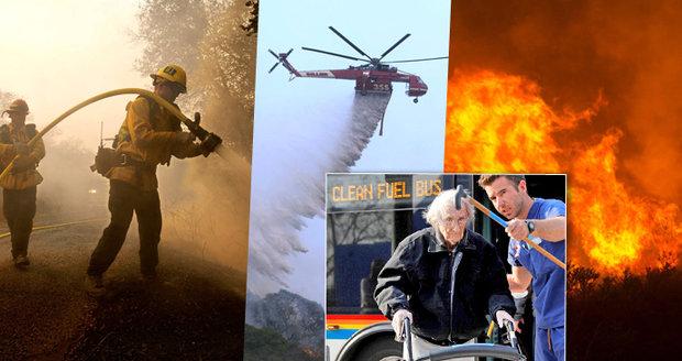 Nejtragičtější požáry v historii Kalifornie: 31 mrtvých, stovky pohřešovaných