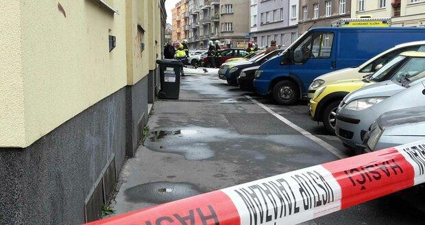 Policisté museli zpacifikovat muže, který je napadl. (ilustrační foto)