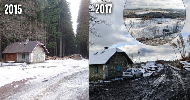 Největší přírodní katastrofa v historii českého lesnictví zasáhla pohoří Nízkého Jeseníku. Před očima mizí tisíce hektarů lesa.