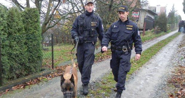Recidivista měl smůlu. Policejní pes mu nedal šanci uniknout. Ilustrační foto.
