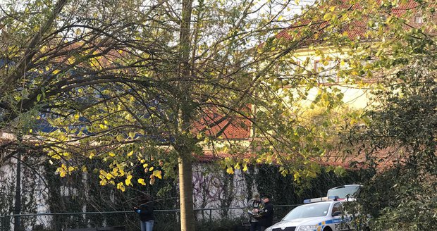 Mrtvé tělo na Františku: 38letého bezdomovce našli ležet v parku