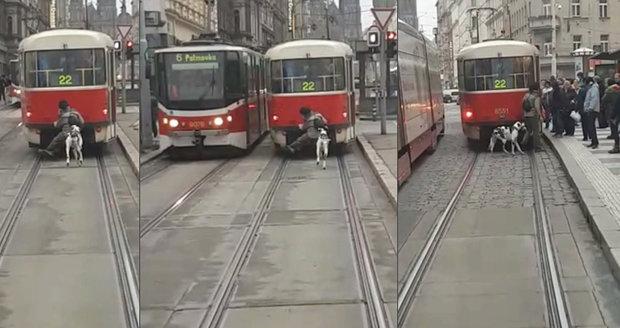 Muž na spřáhle tramvaje za sebou vláčí ještě psa na vodítku.
