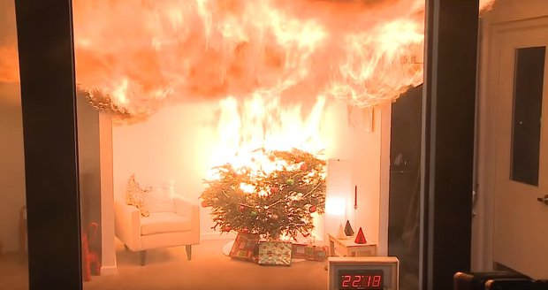 Vánoční stromky jsou extrémně hořlavé. Jak ochráníte svůj byt?