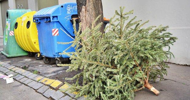 Stromek dejte odstrojený ke kontejnerům