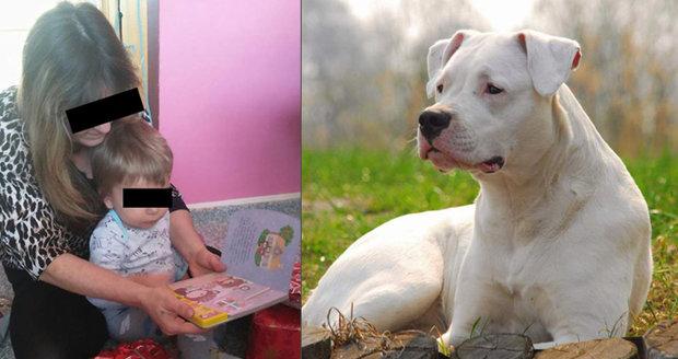 Další tragédie v rodině Vlastíka (†1): Chlapce zakousl pes, jeho dědu zavraždili