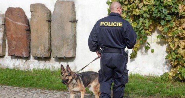 Průšvih české kriminalistiky: Pachové stopy jsou jako důkaz vyloučené, tvrdí odborníci