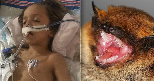 Chlapec (†6) si pohladil netopýra a zemřel. Proti vzteklině nepomohla ani drahá léčba