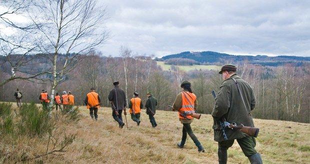 Na jihovýchodě Prahy se budou do konce roku konat myslivecké hony na divokou zvěř. (ilustrační foto)