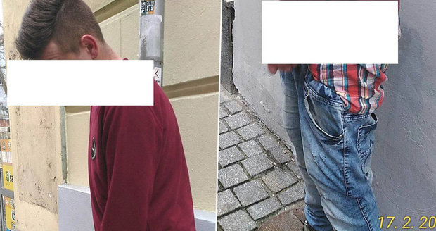 To zas byla úroda! Sjetý mladík se v Plzni ukájel, strážníci sbírali opilce jako houby