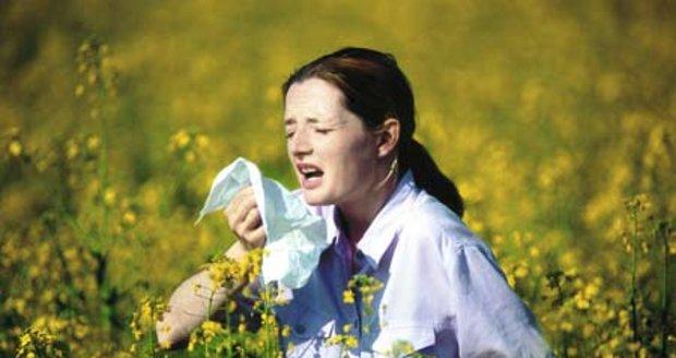 Alergie - ilustrační foto