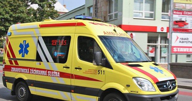 Muži napadli strážníky i záchranku. (Ilustrační foto)