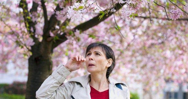 """Svědění, kýchání a rýma: Alergikům začíná """"peklo"""", jak ho vydržet?"""
