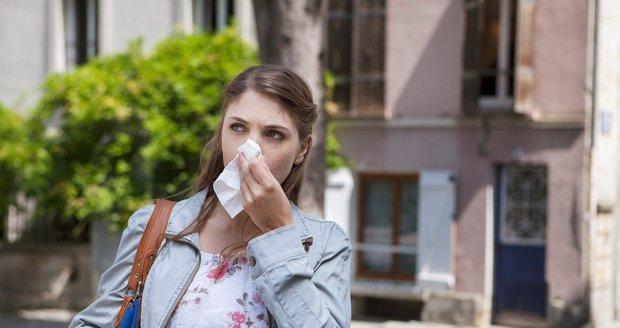 Alergikům začalo peklo. Kvetou lísky, brzy se přidají břízy a topoly