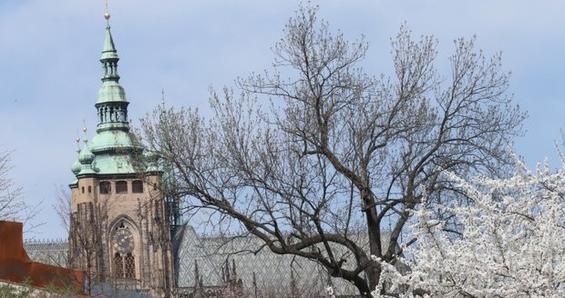 Rozkvetlá Praha již v dubnu