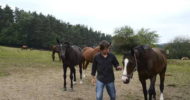 Martin Kraus miluje koně a díky tomu dostal i roli v Popelce
