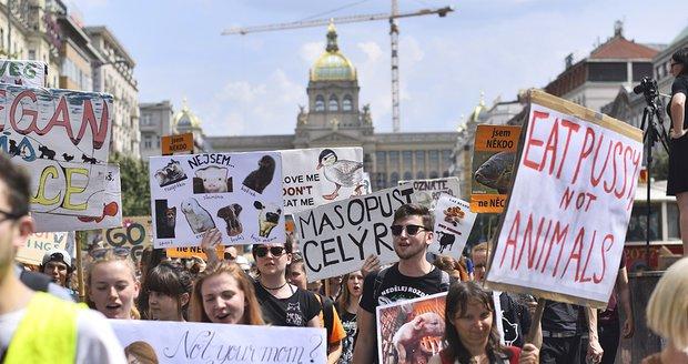5c218db8f93 Stovky veganů z celého Česka se sešly na Václaváku. Demonstrativním  průvodem bojovali za práva všech