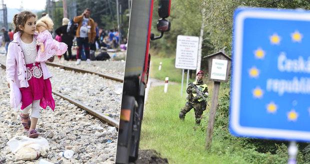 Migranti podali loni v EU přes 720 000 žádostí o azyl, v Česku jsou nejméně úspěšní