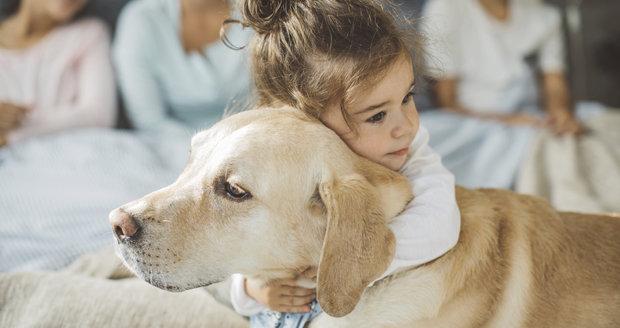 Pes se pro vaše dítě stane nerozlučným kamarádem, zároveň ho ale může i naučit odpovědnosti.