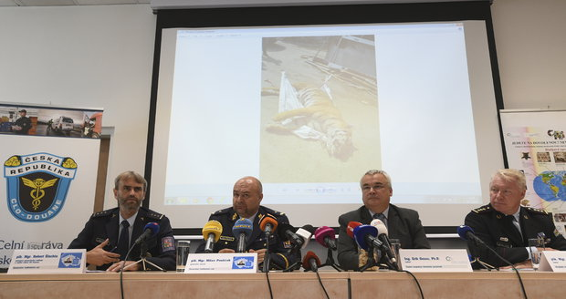 Tisková konference k nelegálnímu obchodování s tygry, které odhalila policie s celní správou.