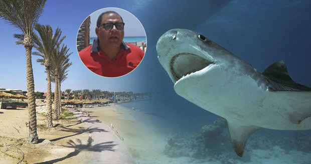 "Hon na žraloka: ""Kousl a vypařil se."" Starosta žasne nad útokem, predátora hledá rychločlun"