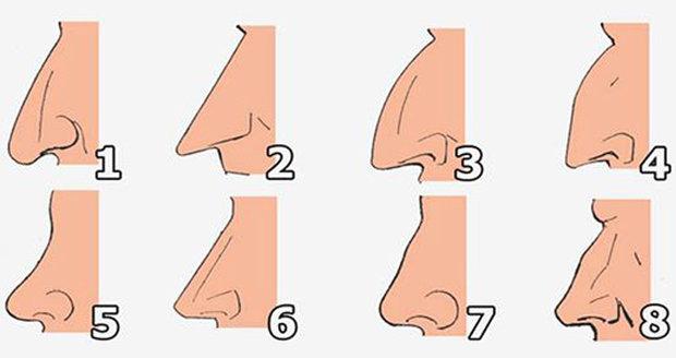 Který nosík je ten váš?