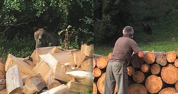 Poplach v Novém Hrozenkově: Medvěd se zatoulal až ke školce!
