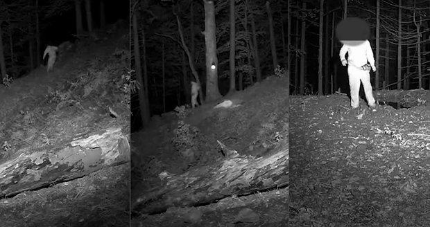 Martin se ztratil v lese, kolem kroužil medvěd: Zachytily ho pozorovací kamery