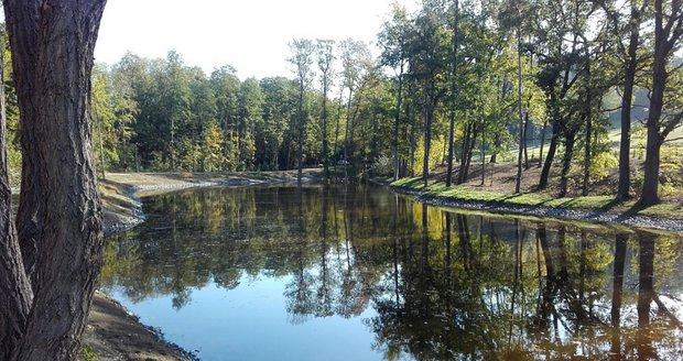 Nový rybník Lipiny na okraji Modřanské rokle.