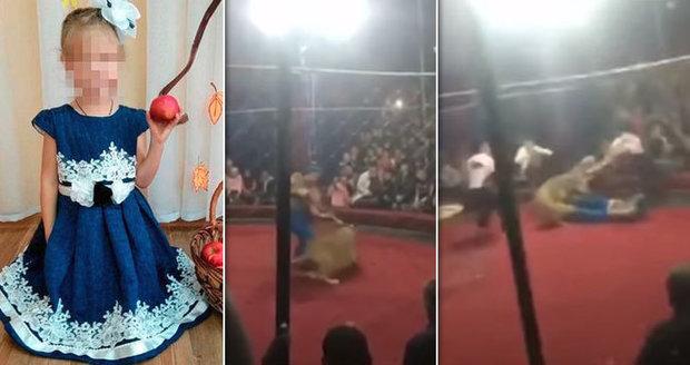 Lvice v cirkuse potrhala holčičku (4): Do manéže ji strhla i přes zábranu
