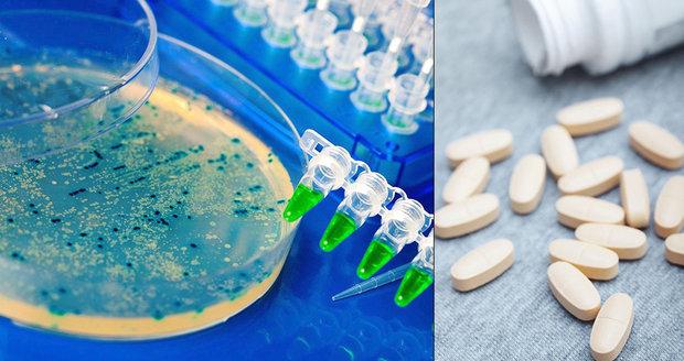 """""""Supervirus"""" ročně zabije 33 tisíc Evropanů. Často nezabírají ani antibiotika"""