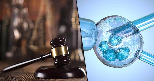 Ústavní soud rozhodne v případě umělého oplodnění