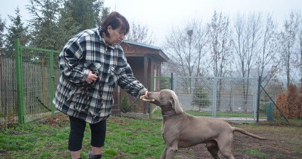Matka s dcerou zachránily přes 20 tisíc psů a koček. Útulek v Řepnici pomáhá už 25 let