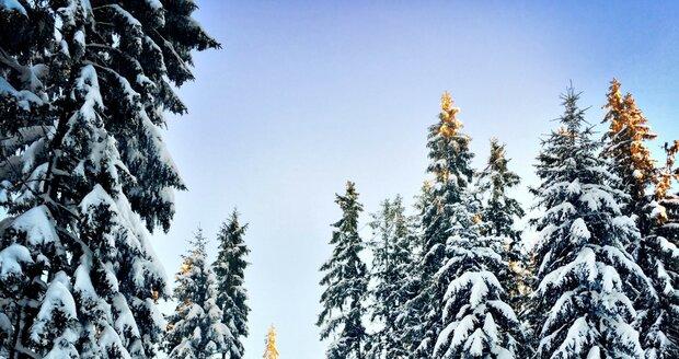 Sníh na Vánoce nenapadne, o svátcích bude teplo. Ochladí se až na Silvestra (ilustrační foto)