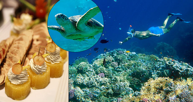 Jedním z míst, která lákají v jakoukoli roční dobu a nabízejí nepřeberné možnosti jak si odpočinout a prožít nové zážitky, je egyptský resort Royal Brayka Bay.