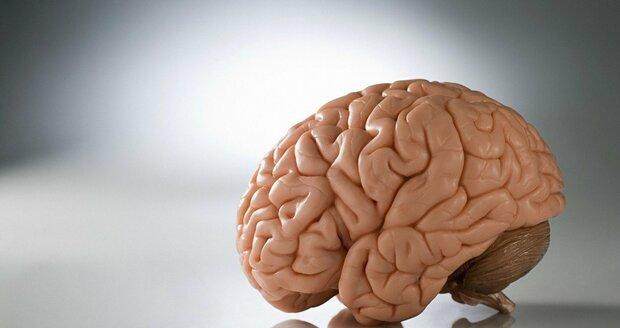 Jen čtvrtině pacientů, kteří mozkové aneuryzma přežijí, se podaří se plně uzdravit. Pro následnou úroveň kvality života je důležitá správná a včasná rehabilitace.