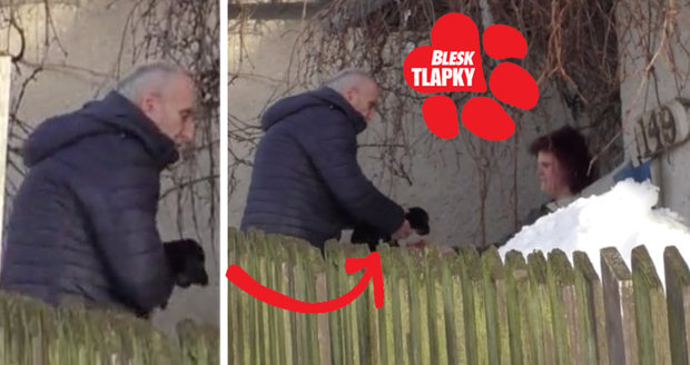 Množitelka ze Světnova je zřejmě i překupnice psů. Tohle natočila kamera Blesk tlapek!