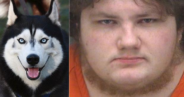 Úchyl si oblékl kostým psa a znásilnil huskyho: Soud ho poslal rovnou do vězení!
