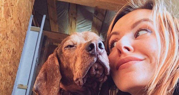 Kariéru snů vyměnila za starost o stovku nemocných psů v lese. A je mnohem šťastnější!
