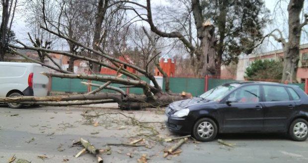 Vítr strhával 4.3.2019 střechy a lámal stromy