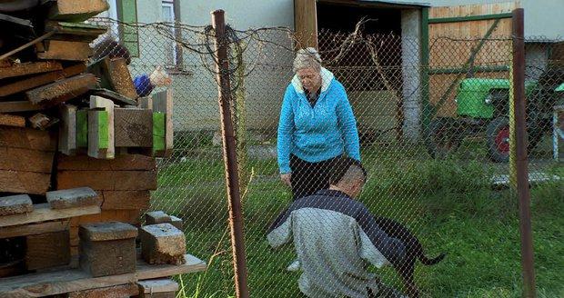 Katka a Robert řeší zraněného pejska.