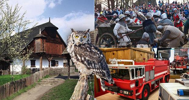 Tipy na víkend: Přivítejte jaro, zahoukejte si se sovou nebo potkejte Žižku u Sudoměře